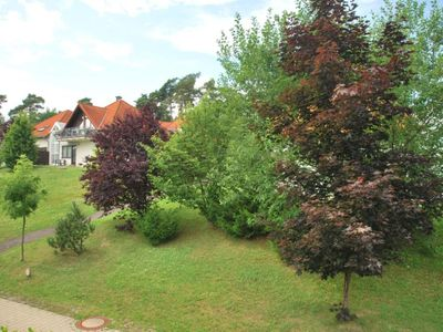 Photo for 1 bedroom accommodation in Stromberg