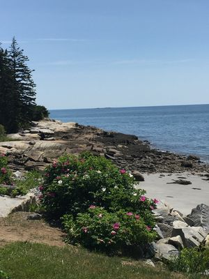 Photo for Oceanfront Cottage with Sandy Beach