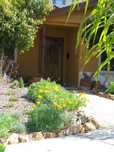 Rustic Front Door with speak easy &seasonal California Poppy & other Natives