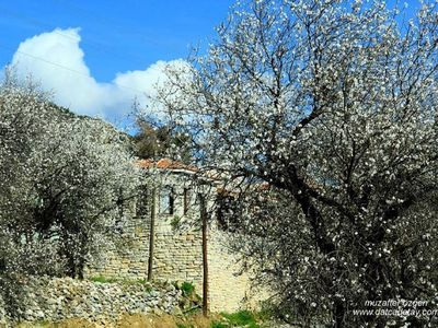 Photo for 2 bedroom lovely stone house with wonderful views