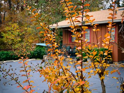 Cabin 2-bdrms with Pool and Boat Dock Access on Norfork Lake, Arkansas