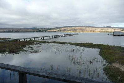 View of Tomales Bay from the back deck