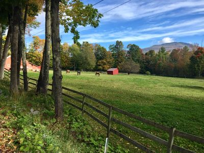 """Photo for Manchester Luxury - Lovely """"New"""" Barn  - 8 Acres Close to Town"""