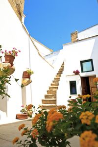 Photo for Old house in Salento