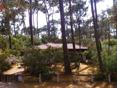 Photo for Holiday bungalow near the lake and sea, surrounded by pine trees