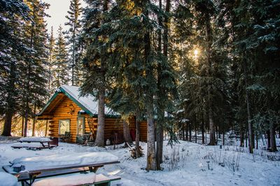 Photo by professional photographer/guest Kim Dalton. Winter at North Pole Cabins