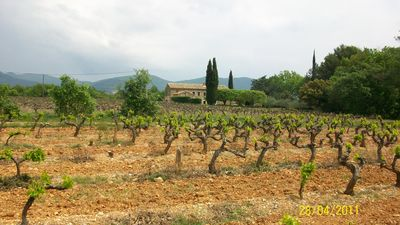 Photo for Mas ideally situated facing the Mont Ventoux and Baronnies, vineyards and truffle