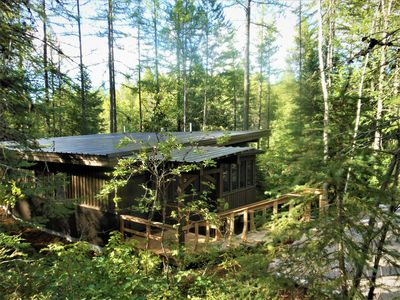 Cabin sits nestled into the cedar forest overlooking the creek below