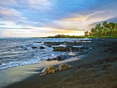 Photo for Turtle Hut I at Punalu'u Black Sand Beach * Most 5 Star Ratings *