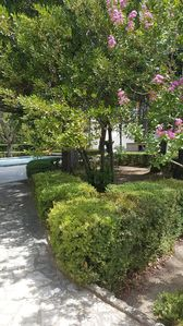 Photo for Gite LE PILA new apartment air-conditioned located in pretty property sported