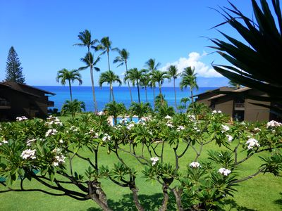Photo for Paradise Ocean Vacation Dream Surrounded by Tropical Gardens