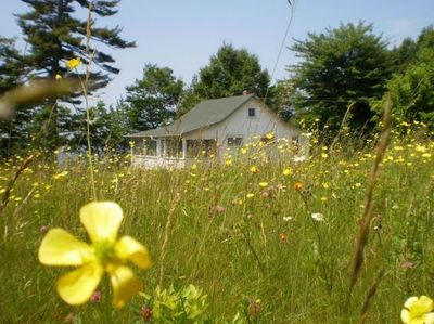 Maine Lakeside Cottage Rental Minutes from the Ocean - Perry