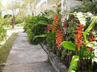 Photo for Very attractive prices per week of rental in Guadeloupe