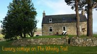 Lovely and peacefull holiday cottage in Speyside hills