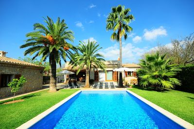 Swimming pool and garden with palm trees