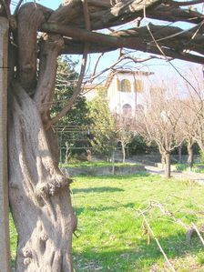 Photo for Il Giardino dei Semplici B&B in a simple and relaxing atmosphere.
