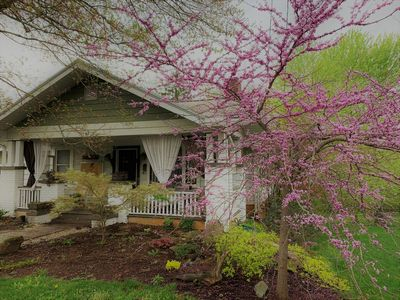 Photo for Beautiful West Asheville Artisan Home, Live Like a Local