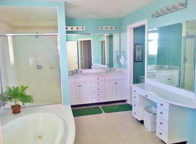 Large private bath attached to South Side master suite