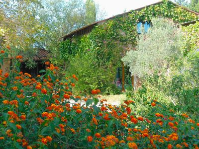 Photo for Old Catalan Mas, 3km from the sea, 160m, for 2 to 10 people, quiet garden