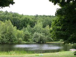Photo for 1BR House Vacation Rental in Waterbury, Vermont