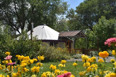 With the Foreground in Bloom, the  Yurt is in witness.