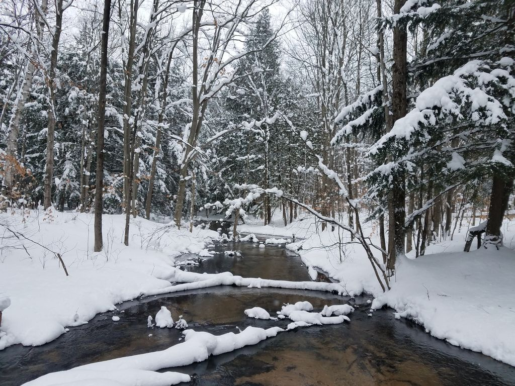 Looking For A Great Vacation Spot To Enjoy All That Michigan Has To Offer?