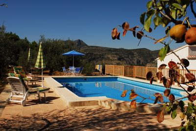 Pool surrounded by mountains, olive & fruit trees