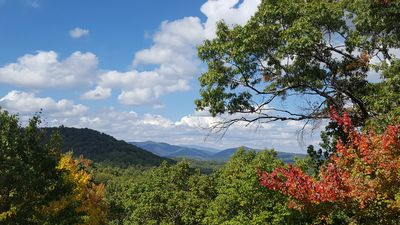 Photo for Cozy Mountain Getaway In Cherry Log - between Ellijay and Blue Ridge