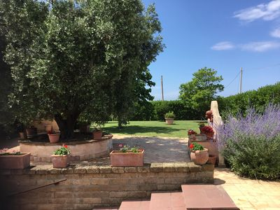 Photo for House in the countryside near Cerveteri