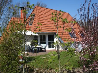 Photo for New, comfortable and family-friendly house directly behind the North Sea dike