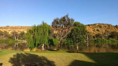 Photo for Bowhill Villa on Murray River