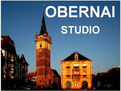 Photo for Rental studio 02 holiday rental obernai in alsace view on small forest