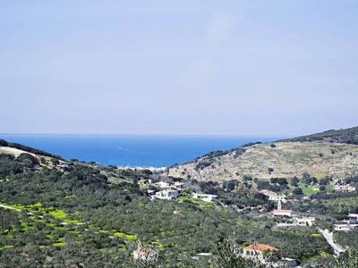 Photo for The house is surrounding with an olive grove of 4 acres