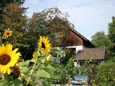 Photo for Cosy apartment on the 1st floor only 150 metres from Lake Constance