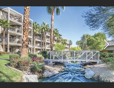 Photo for A beautiful oasis in the California desert