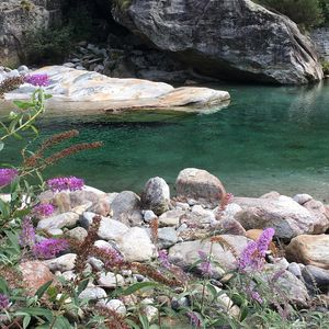 Photo for House / Cottage in Valle Verzasca / Ideal for a relaxing holiday by the river
