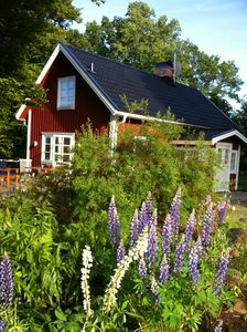 Photo for Holiday house in dream location directly by the lake in traditional Smålandarchitektur