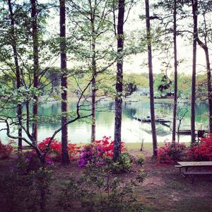 Photo for Lake Keowee Waterfront Home with Private Guest House