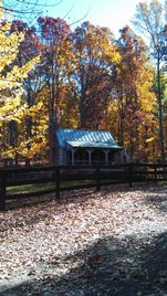 Come and view the Fall foliage!