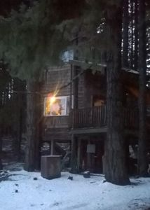 Photo for Romantic Wilderness Tree House