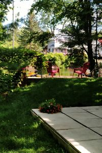 Photo for COZY COTTAGE IN THE HEART OF BALA MUSKOKA