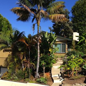 Front of House - tropical welcome