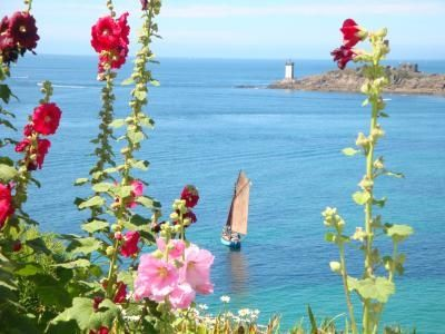 Photo for Panoramic view of the Iroise Sea, its lighthouses, its islands (Ouessant, Molène)