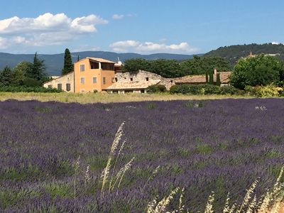 Photo for Large house 6 to 8 people ATV provided Quiet and Nature in Luberon