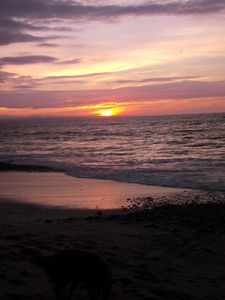 Photo for Oceanfront Condo, Gorgeous Sunsets