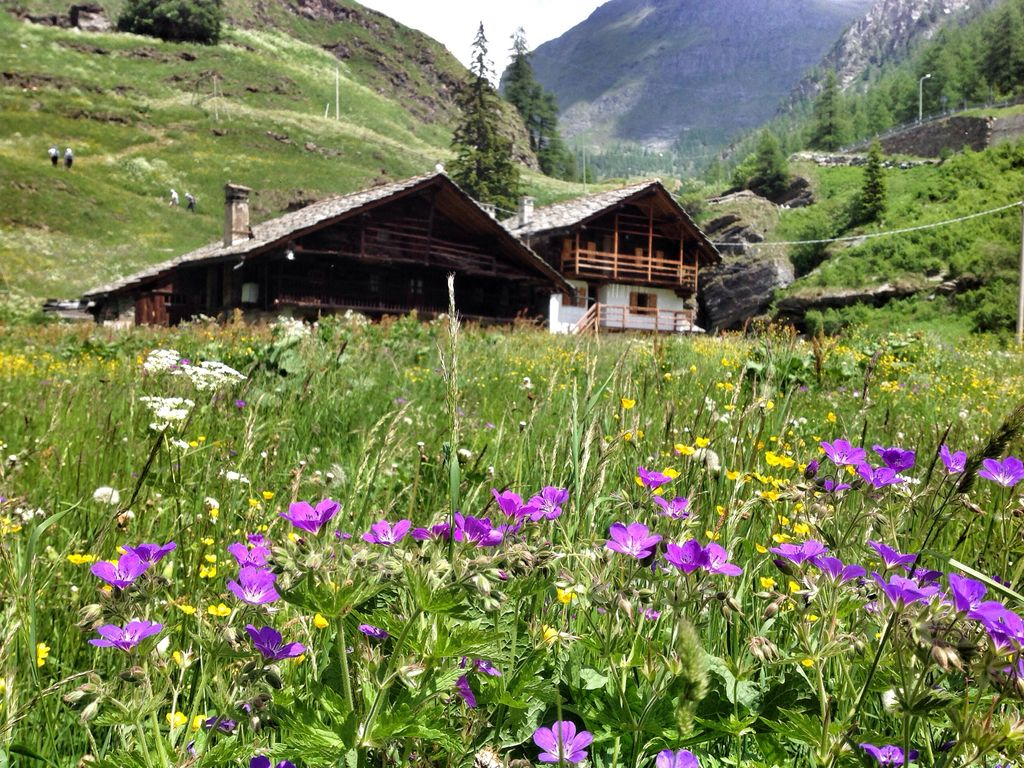 Mountain House At The Foot Of Monte Rosa Vrbo
