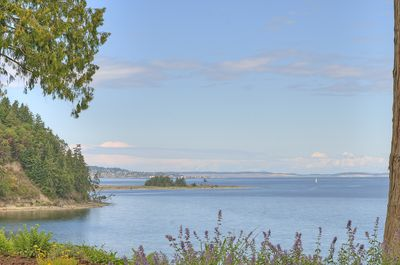 Port Townsend Bay view from the garden.
