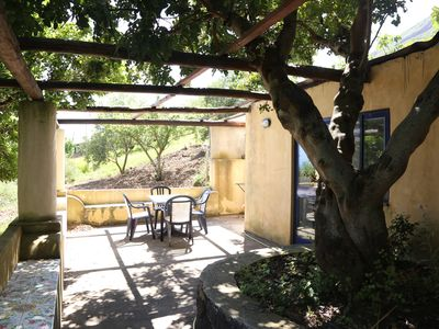 Photo for House under a carob tree, among the vineyards in Salina