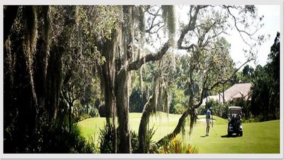 Photo for Killer View!  Golf, Wetlands, Birds, Tennis, See it All!