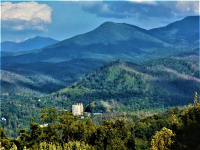 Awesome view of Mt Leconte, Minutes to Ski Slopes & Downtown,  Free WIFI,